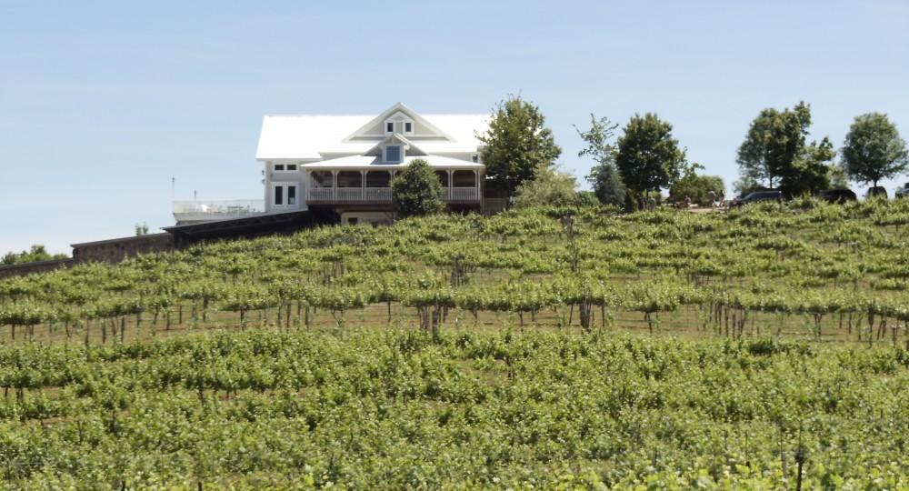 Dahlonega Wine Tour Transportation