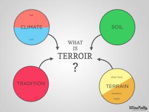 terroir chart