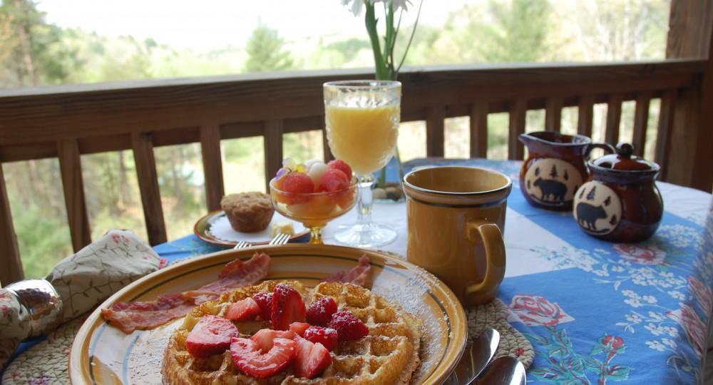Long Mountain Lodge Dahlonegas Favorite Bed And Breakfast