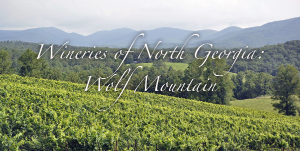 Wineries of North Georgia - Wolf Mountain