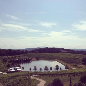 View from the deck (courtesy of the Frogtown Wine Facebook page)